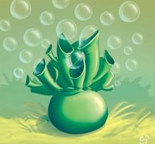 Buisson à bulles