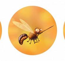 Tong, les moustiques